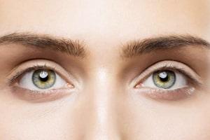 انواع چشم