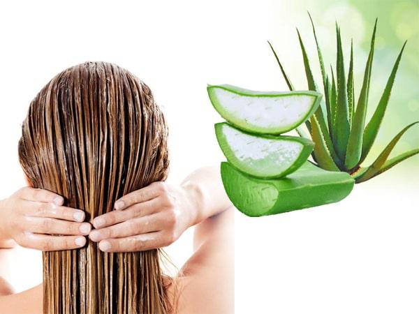 صاف کردن مو با آلوئه ورا